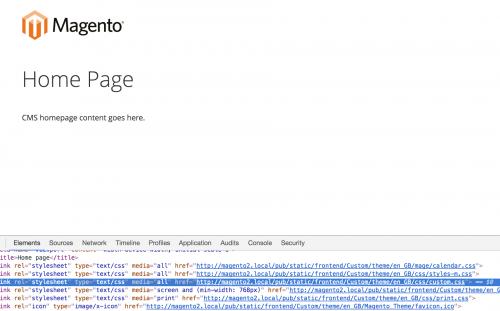 Add Custom CSS in Magento 2